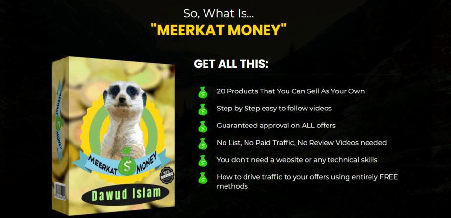 Meerkat money review heading